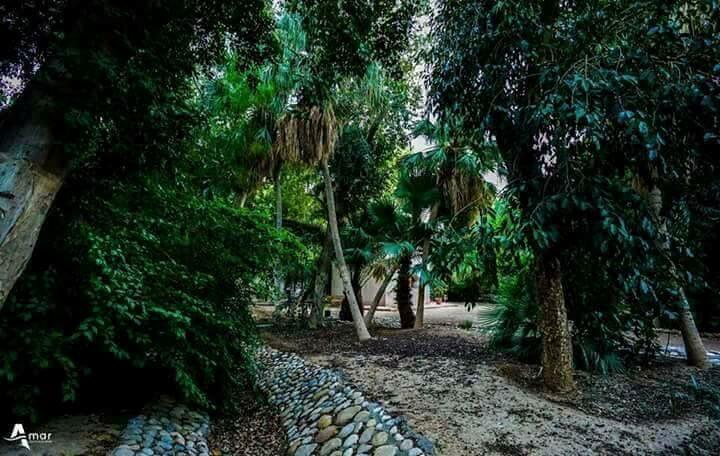 حديقة لاندو، الجزائر