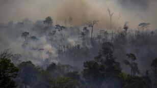 الدخان يتصاعد إثر نشوب حريق في غابات الأمازون، البرازيل