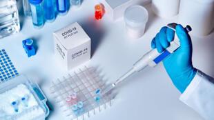 كورونا وفحص الـ PCR