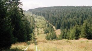 الحزام الأخضر في المانيا