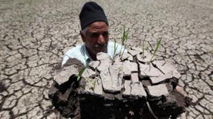 مزارع مصري تعاني أرضه من الجفاف في الدقهيلة على بعد 120 كم من القاهرة