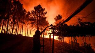 رجل يحمل خرطومًا عندما اقتربت النيران من منزله في أمندوا في ماكاو ، وسط البرتغال في 21 يوليو 2019
