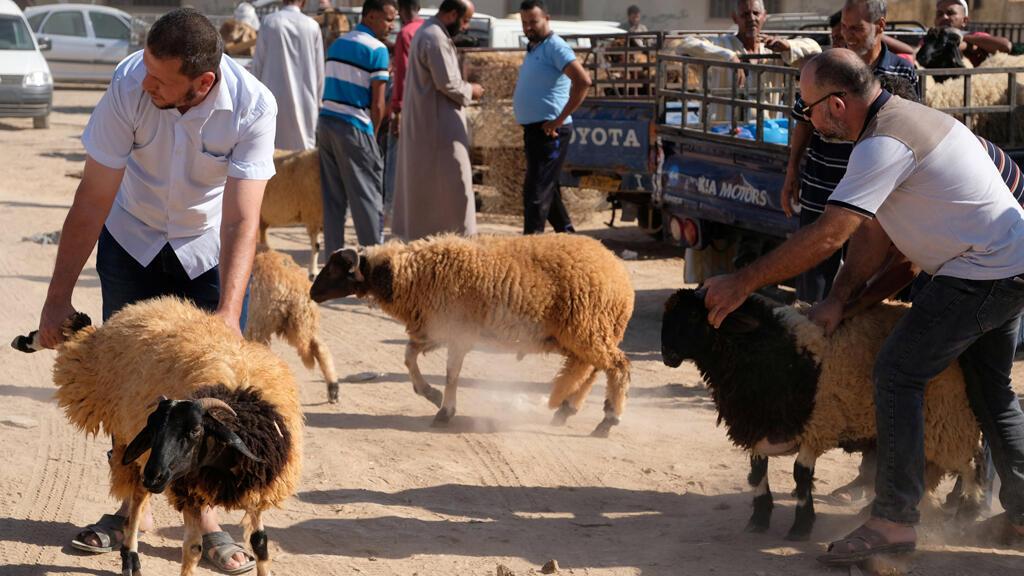هدنة مشروطة في ليبيا لمناسبة عيد الأضحى