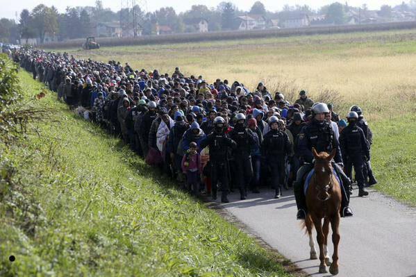 جيش من اللاجئين على الحدود الكرواتية السلوفينية