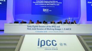 وفود وخبراء في الجلسة الإفتتاحية للجنة الحكومية للتغير المناخي في انتشون في كوريا الجنوبية في 1 تشرين الأول/اكتوبر 2018