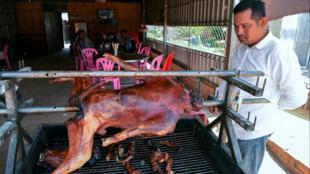 مطعم في كمبوديا يقدم لحم الكلاب المشوية لزبائنه