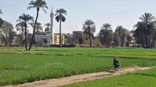 luxor_campagne_egypte