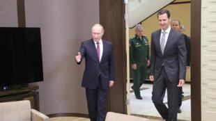 الرئيس بوتين يستقبل بشار الاسد في سوتشي يوم 20 نوفمبر 2017 ( أ ف ب)