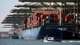 ترسو سفن الحاويات في مبنى Pasir Panjang في سنغافورة-