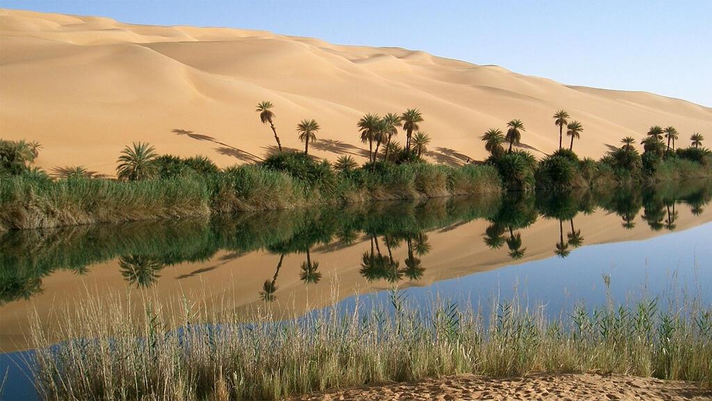 واحة في الصحراء الليبية