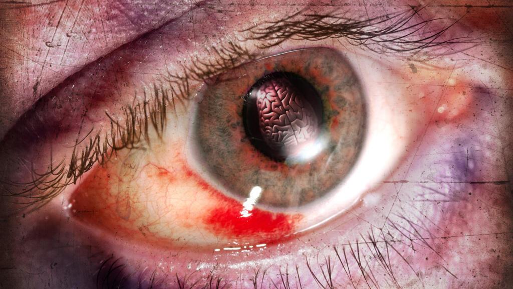 أدمغة صغيرة تم خلقها في المختبر تطوّر عفوياً عيوناً تساعدها في الرؤية