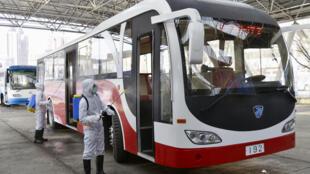 تعقيم حافلات النقل العام في بيونغ يانغ