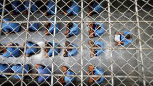 سجن (صورة عامة)