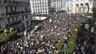 تظاهرة في الجزائر العاصمة يوم 21 فبراير/ شباط 2020